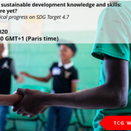 UIS organizes a webinar on progress on SDG4 Target